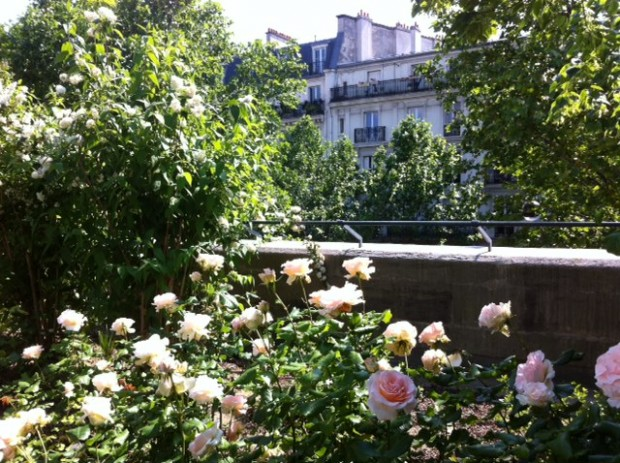 photo 21 620x463 Promenade plantée Parisienne